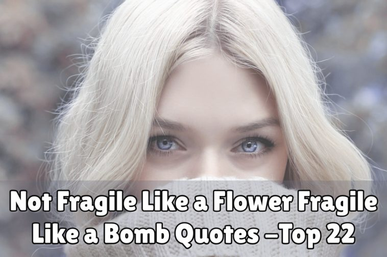 Not Fragile Like a Flower Fragile Like a Bomb Quotes