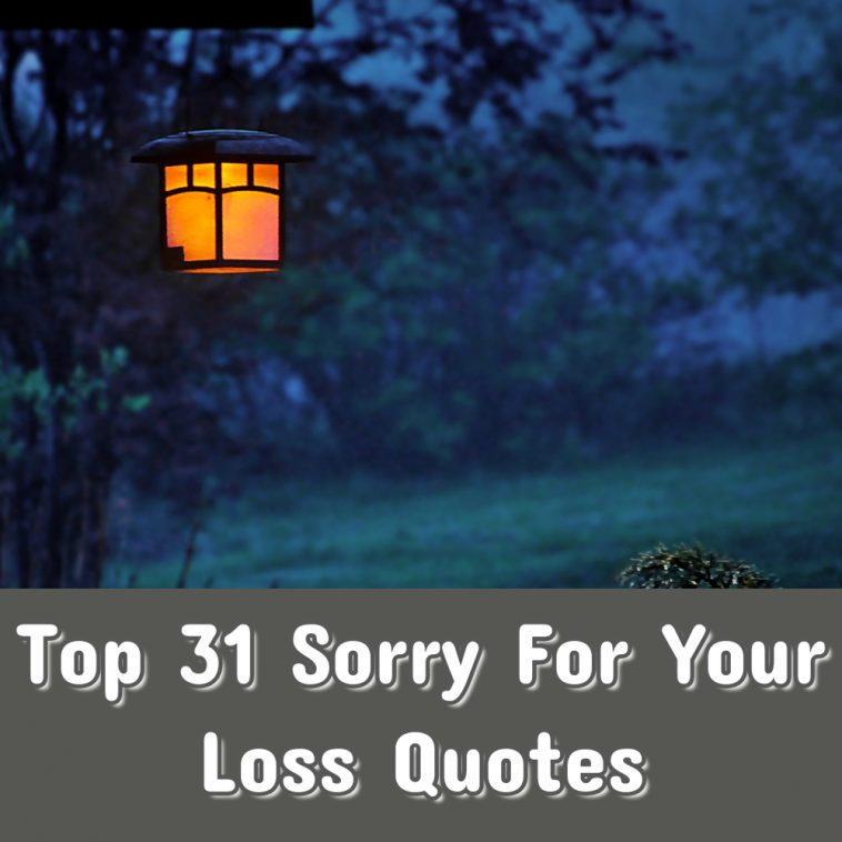 Top 31 Sorry For Your Loss Quotes